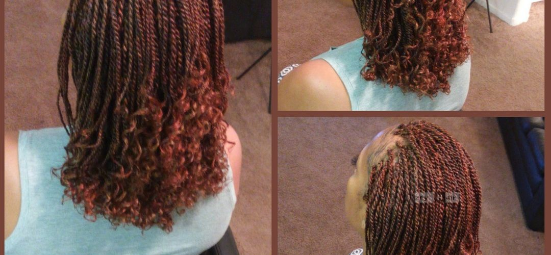 Senegalese Twist with Flexi-Rod Curls - Colors 8 and 350