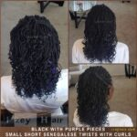 Small Curly Senegalese Twist With Purple Highlights