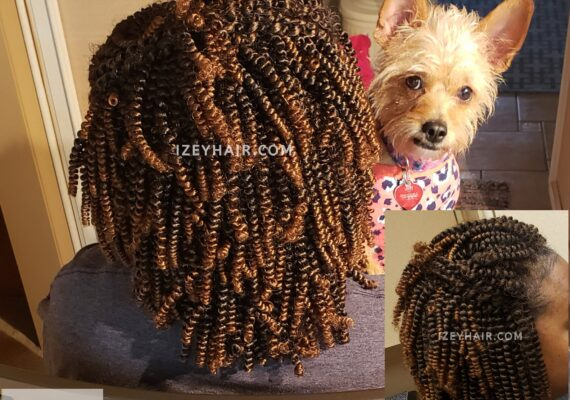 Crochet-Braids-Mobile-Stylist-Vegas-Braider-Cute-Dog